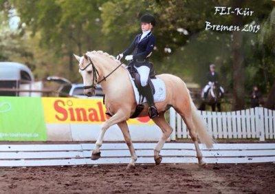 ausrüstung pony fei prüfung